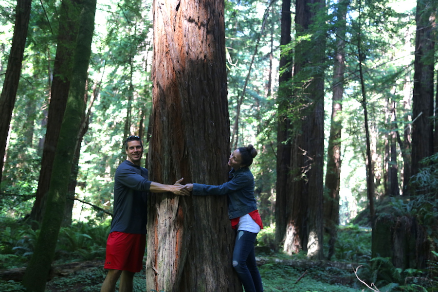 Peter & Annette White hugging a redwood in California
