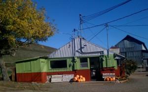 store at Tara Firma Farms