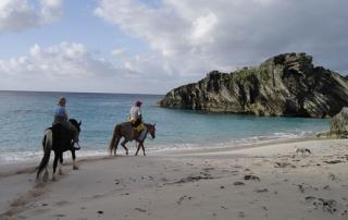 Couples Horseback Riding on the Beach