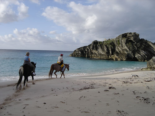 Couples Horseback Riding on the Beach