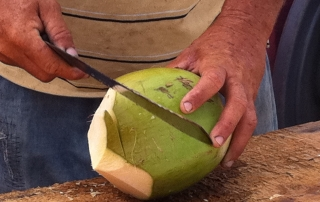 Fresh Coconuts, Grand Cayman