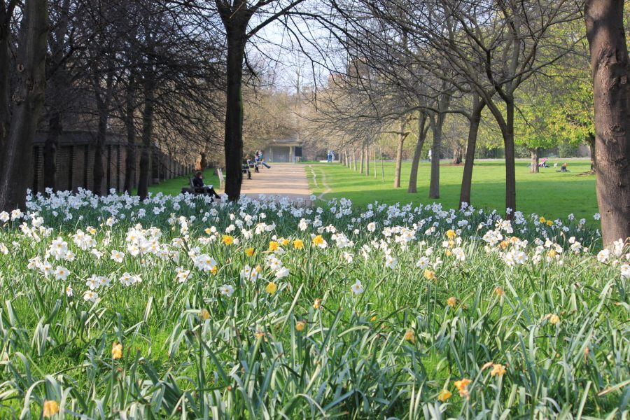 London 39 s hyde park kensington gardens for Kensington park