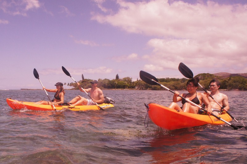 Kayaking to the Sea Turtles