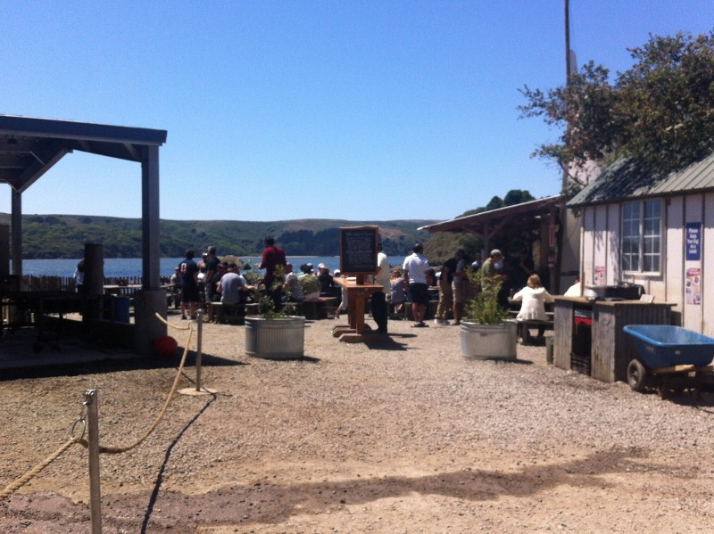 Outside at Hog Island Oyster Farm in Tomales Bay