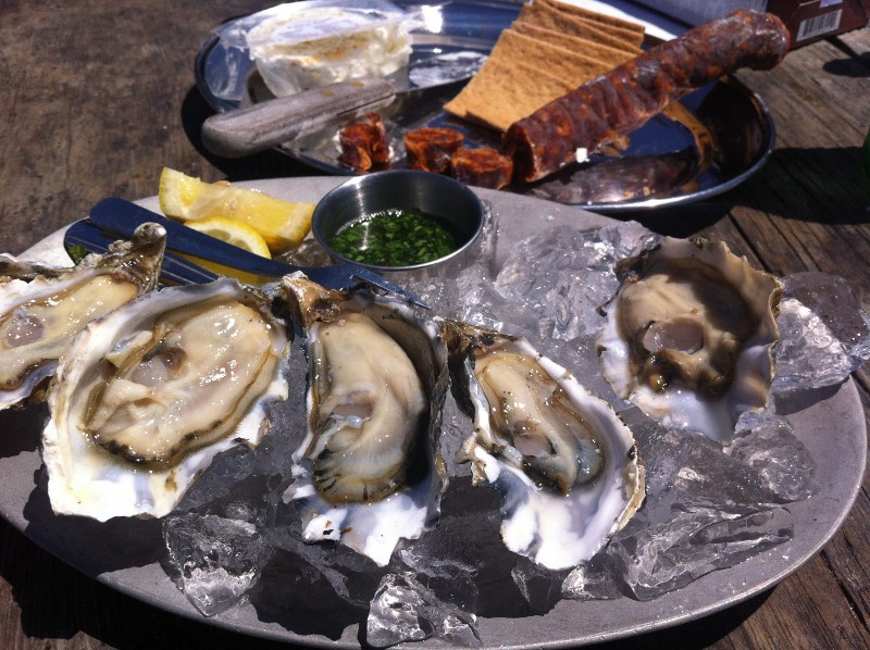 Raw Oysters at Hog Island Oyster Farm
