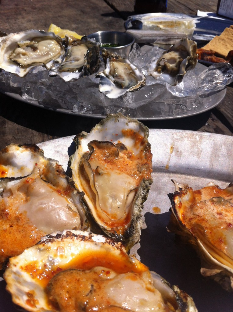 BBQ Oysters at Hog Island Oyster Farm