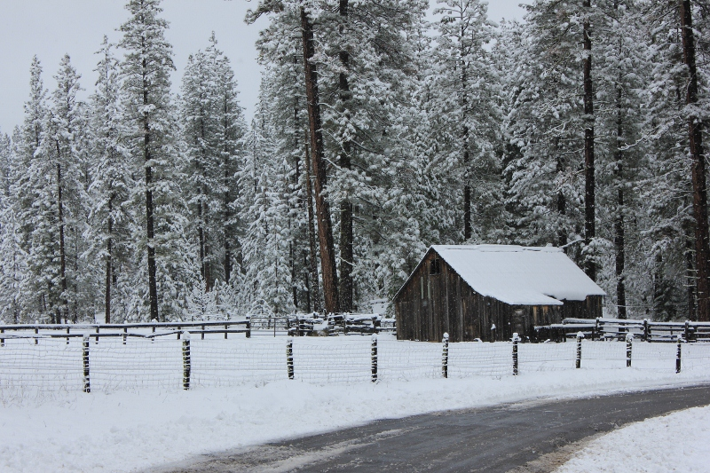 Snowy barn in Yosemite