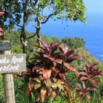 Make 17 Stops on the Road to Hana in Maui