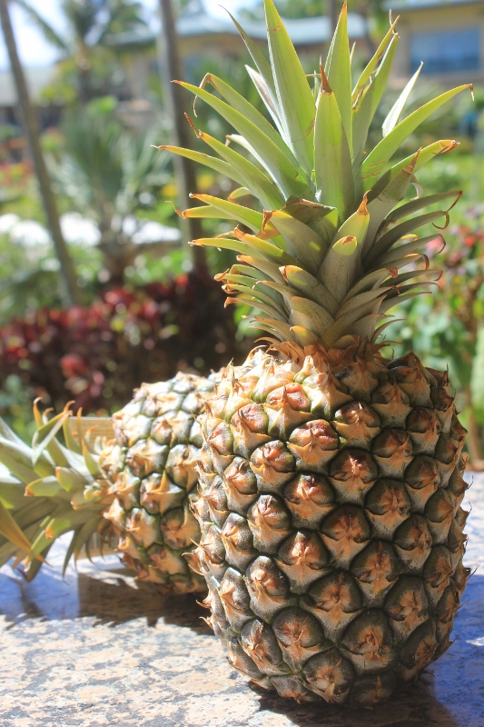 Fresh Maui Pineapple