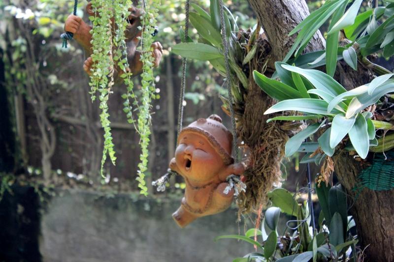 Chiang Mai Garden Souvenir