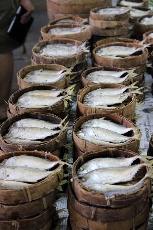 Chiang Mai Market Fish