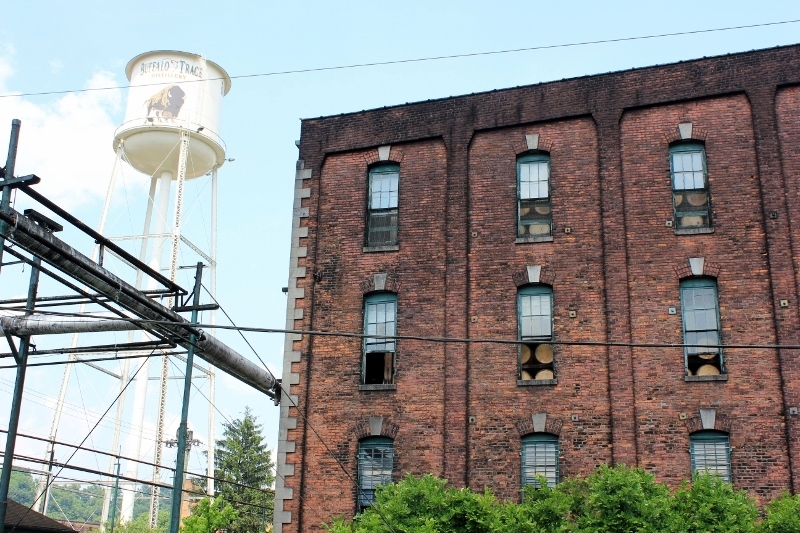 buffalo trace bourbon distillery
