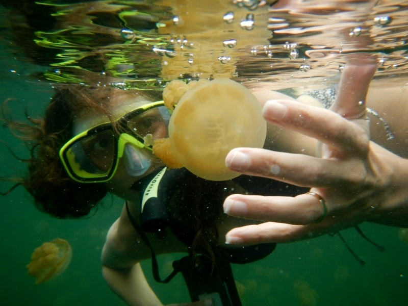 Annette White at Jellyfish Lake in Palau, Micronesia
