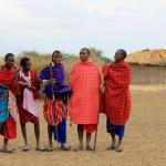 Visit a Maasai Tribe in Tanzania, Africa