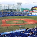 Attend a Baseball Game in Japan