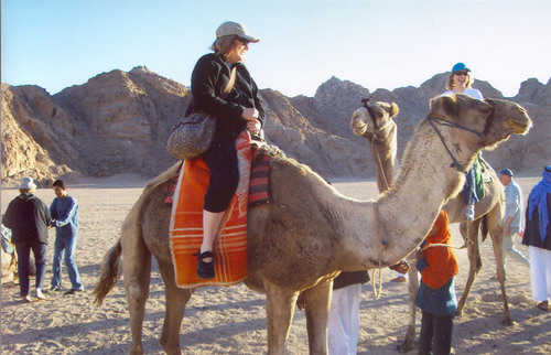 Bucket List Idea: Camel Ride in Egypt