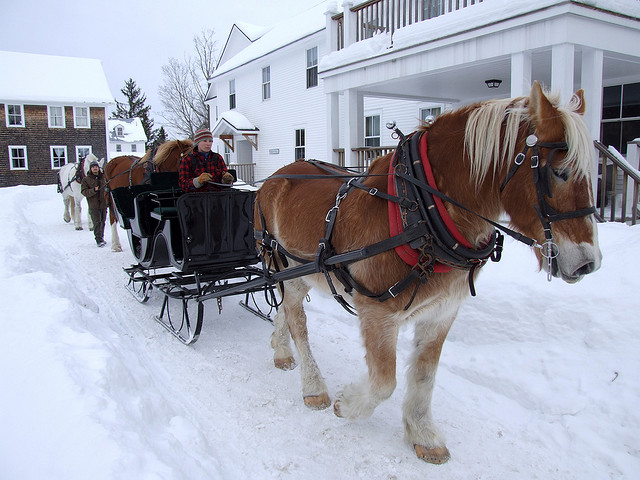 Winter Bucket List: Take a Sleigh Ride