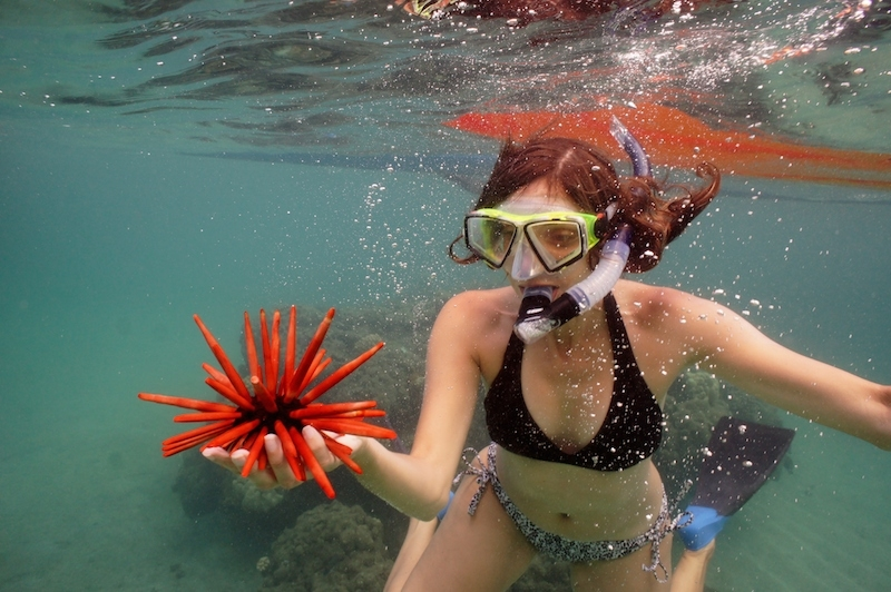 Annette White Bucket List: Snorkel in Maui