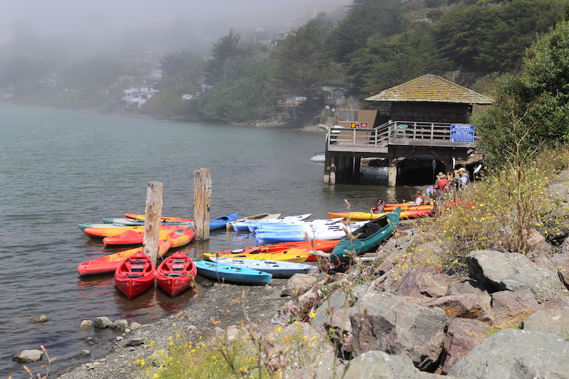 Kayaks in Jenner, Northern California
