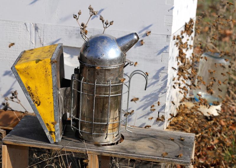 Smoker Beekeeping Petaluma