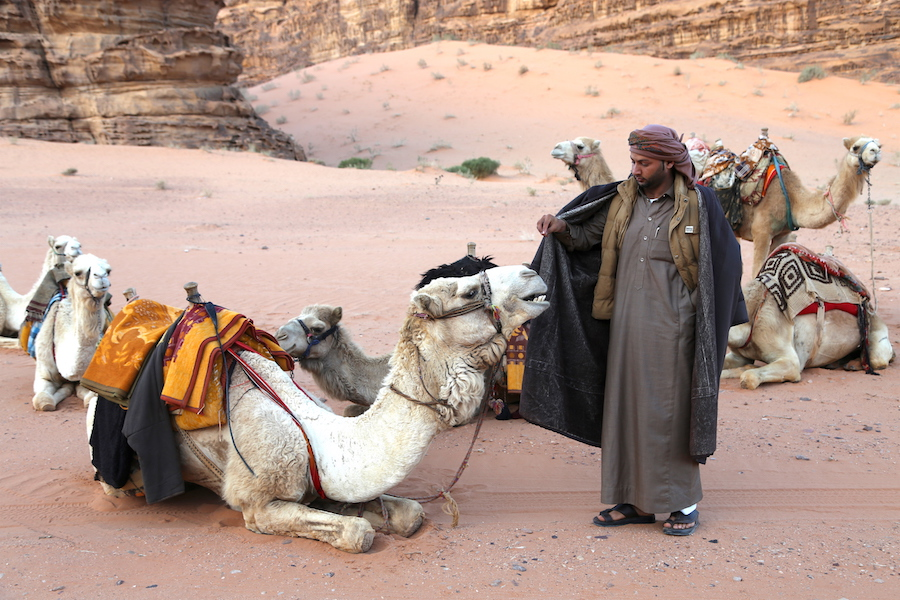 Camel Whisperer in Wadi Rum Jordan
