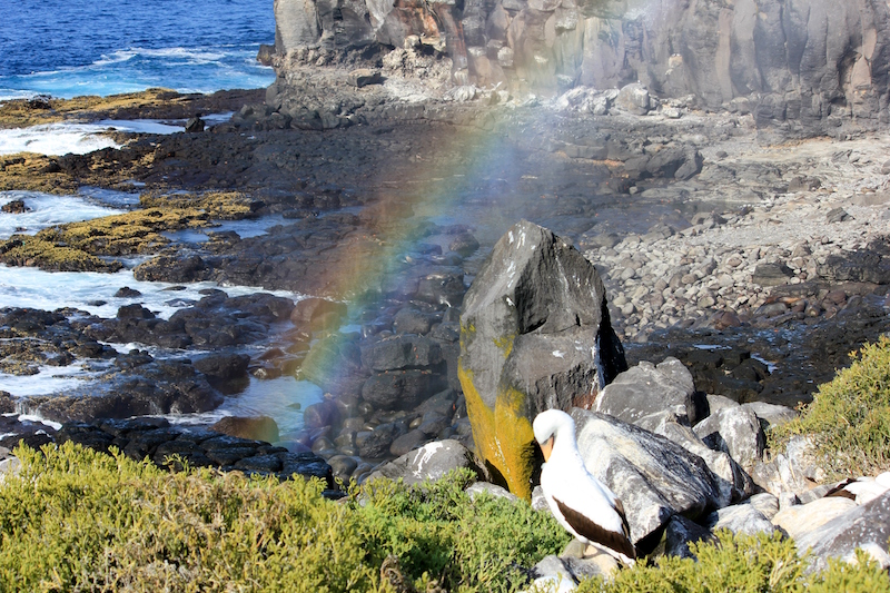 A perfect rainbow in the Galapagos Islands