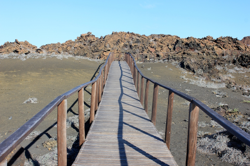 The planked walkway on Bartolome Island on the Galapagos Islands