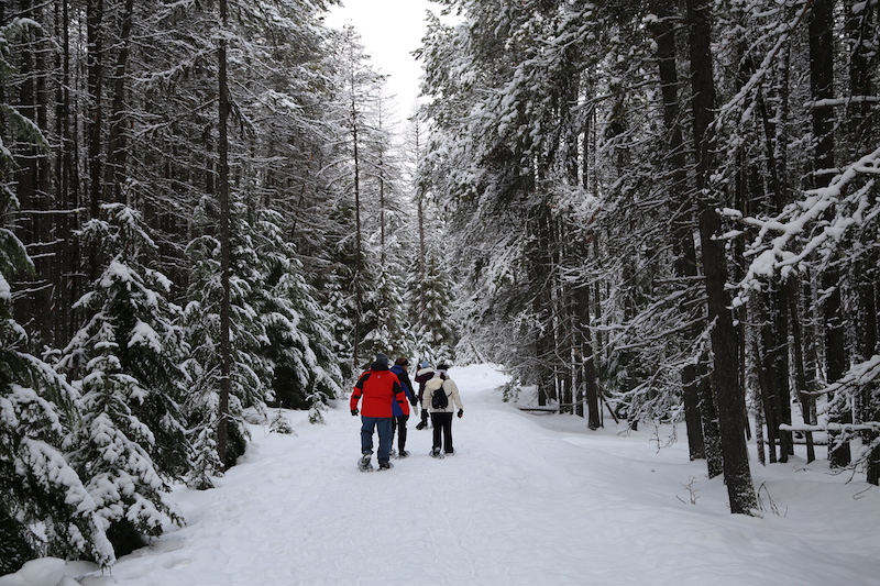 Snowshoeing in Glacier National Park Montana