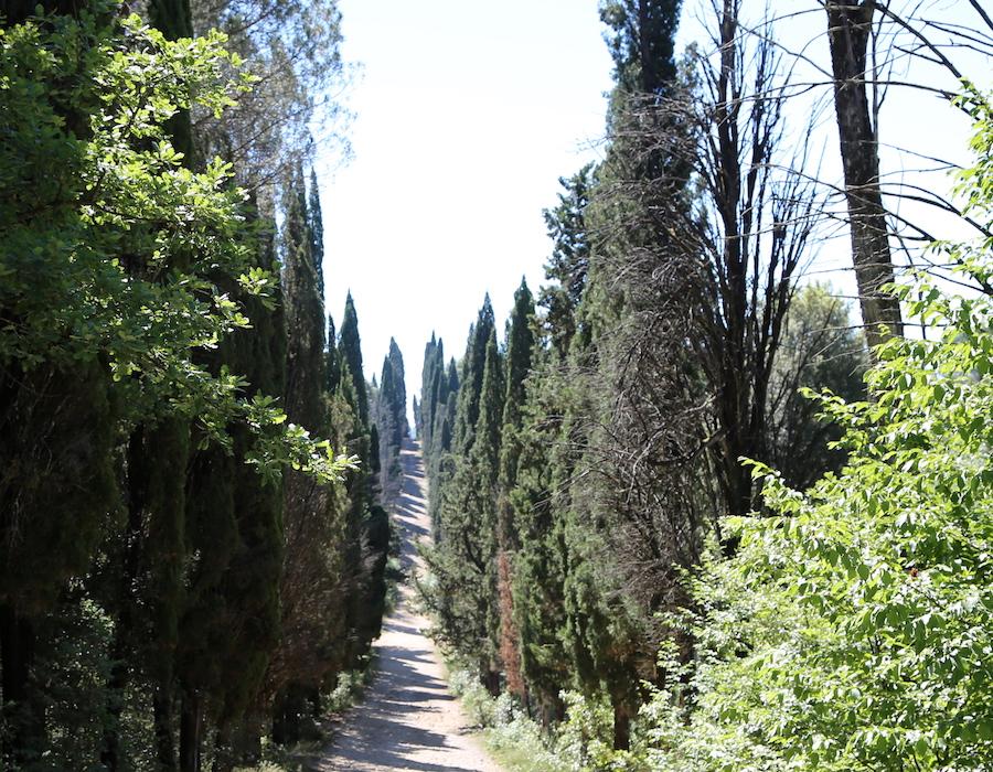 Hiking at Montestigliano luxury villa estate in Tuscany