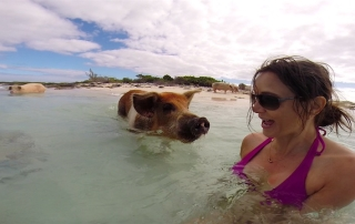 Annette White swimming with pigs in Exuma Bahamas