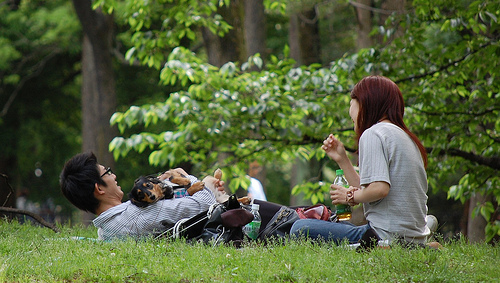 Bucket List for Couples picnic