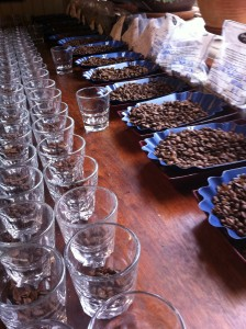 coffee cupping at Volcafe in California