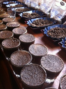 Seeping Stage of Coffee Cupping