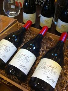 seghesio wine
