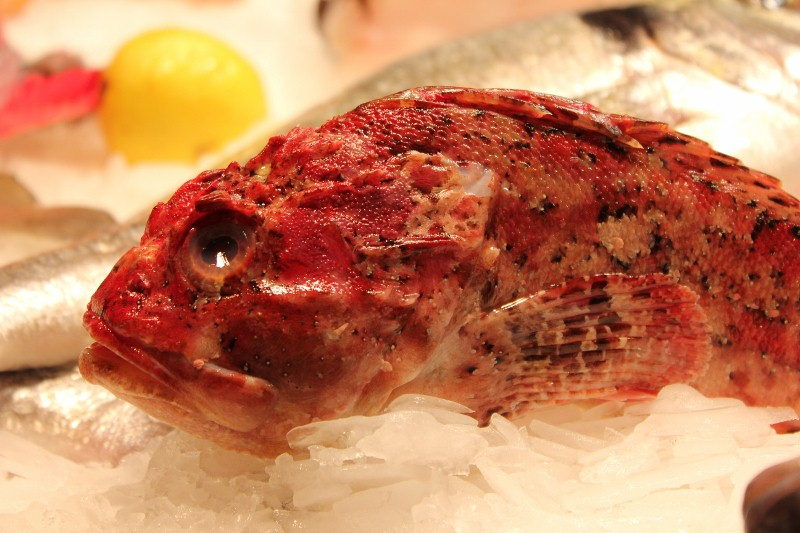 Fish at La Boqueria Market