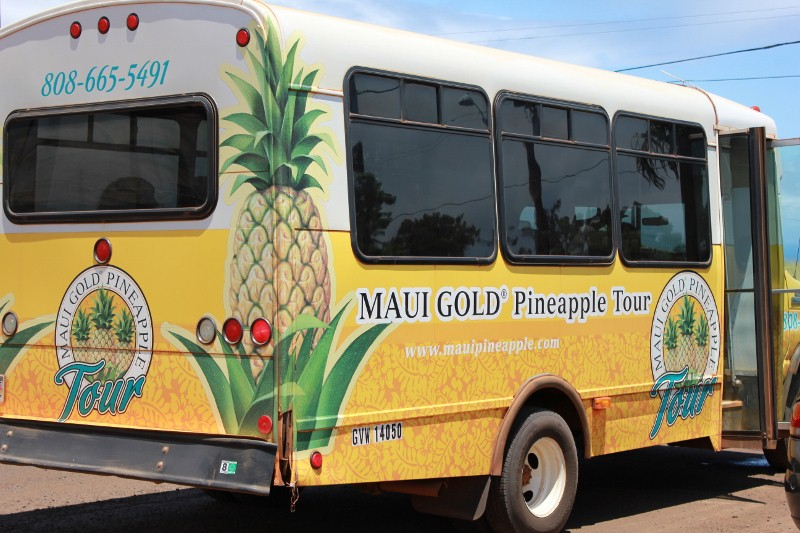 Pineapple Tour in Hali'imaile