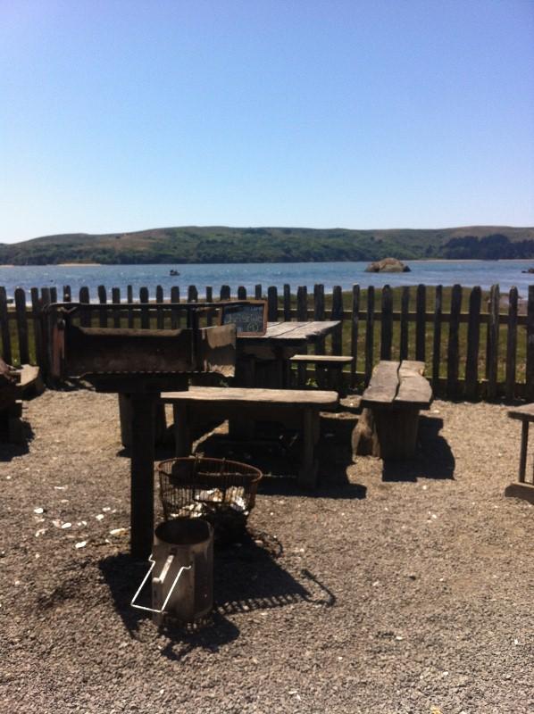 Tables at Hog Island Oyster Farm