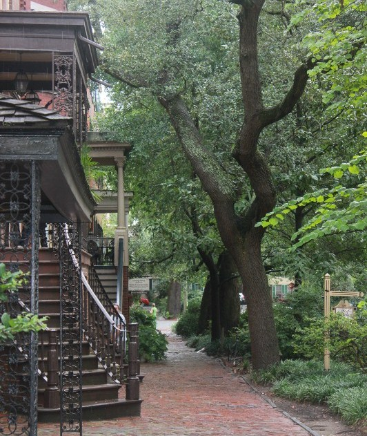 Things to do in Savannah GA: Stroll down Jones Street