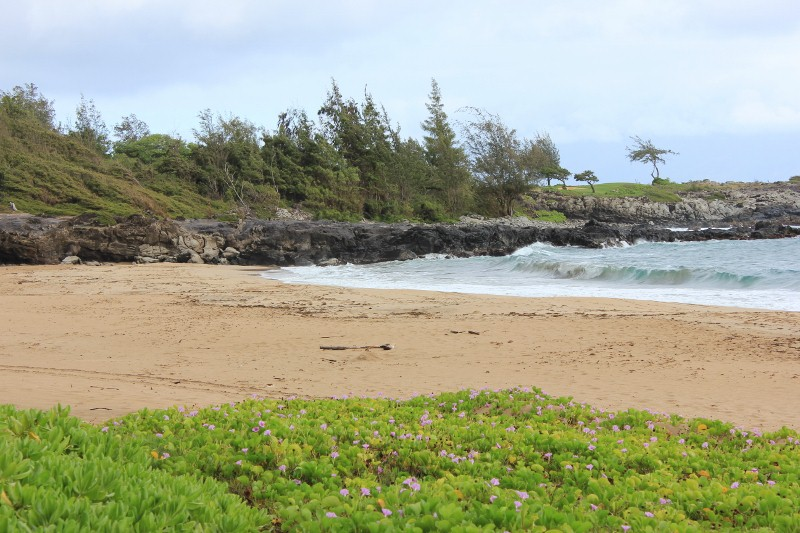 Beach at Kapalua Ritz