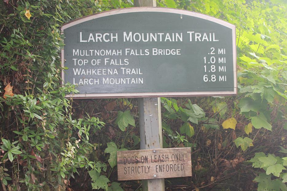 Multnomah Waterfall Trails