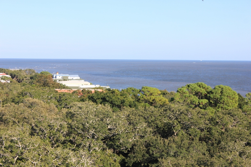 St. Simons Lighthouse View