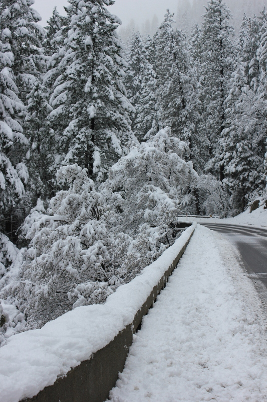 snowy road in Yosemite Valley