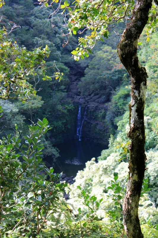 Waterall View at Garden of Eden