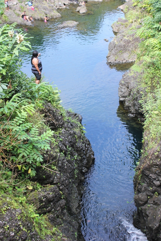 Ching's Pond on the Road to Hana