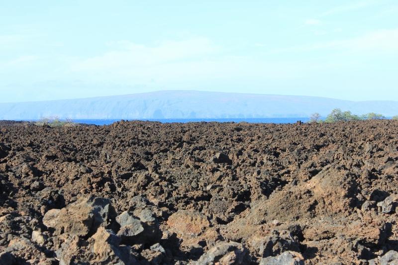Maui Lava Rock