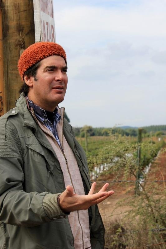 Julio at J. Bouchon Vineyard in Chile