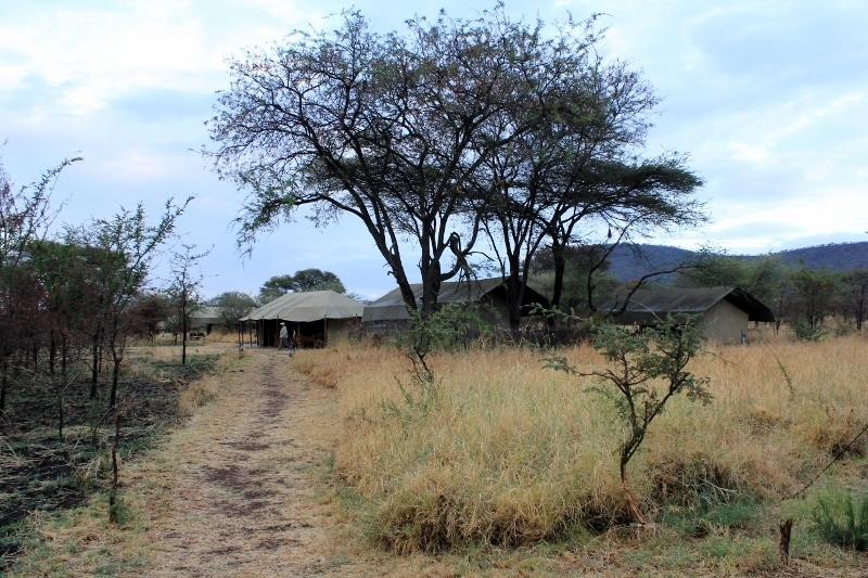 Glamping Serengeti