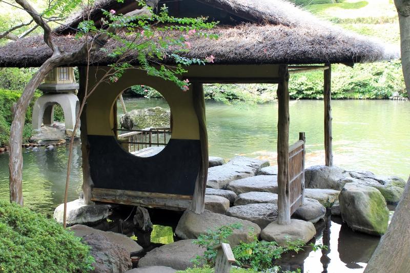 Koi Pond at Japanese Tea Ceremony