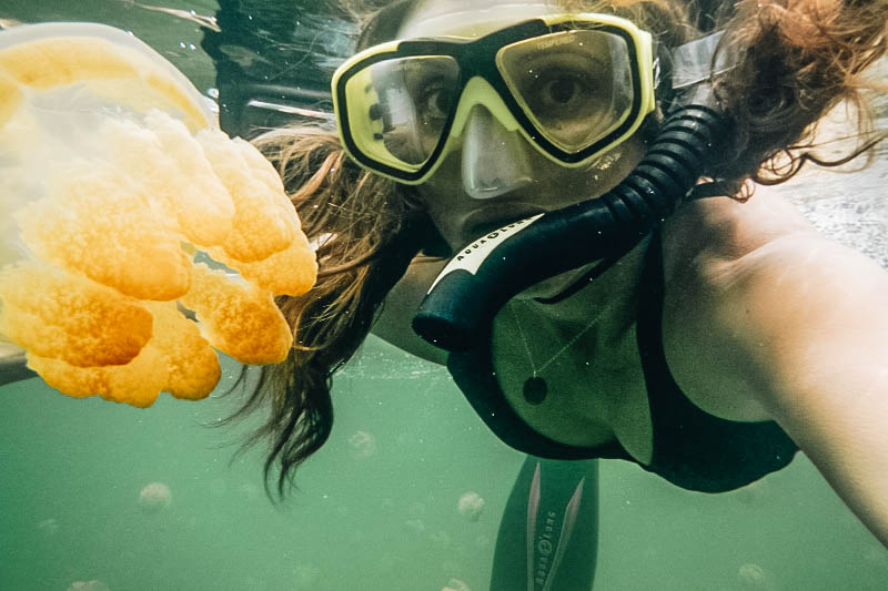 Annette White swimming in Jellyfish Lake in Palau