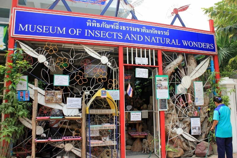 Insect Museum in Chiang Mai, Thailand